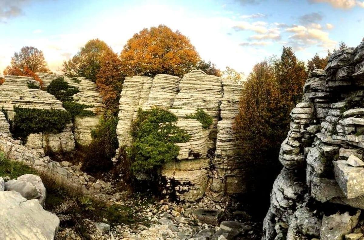 """""""Πέτρινο Δάσος"""": Το σπάνιο αξιοθέατο της ηπειρωτικής γης (video)"""