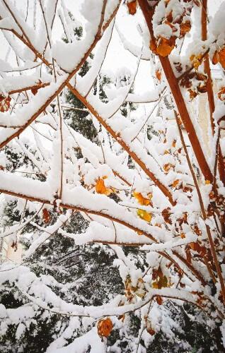 Πώς περάσαμε με τα χιόνια στα νότια προάστια της Αθήνας
